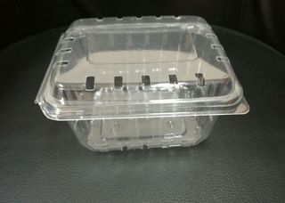 Hinged Punnet Clear PC600 275gm With Holes