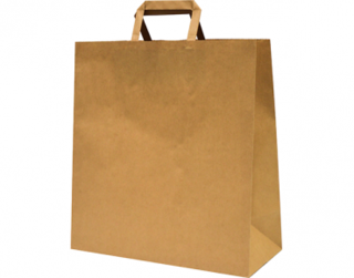 Paper Carry Bag with Flat Paper Handle, Large, Brown - Castaway